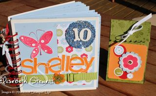 Shelley album and box